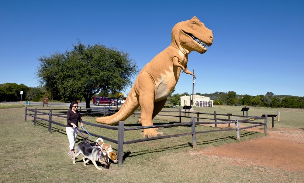 Dinosaur Valley State Park